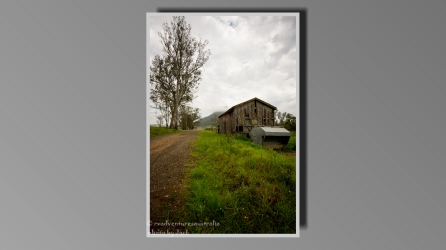 Shed near Urbenville