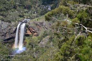 Ebor Falls-1584