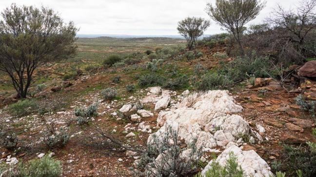 Broken Hill-Living Desert Park
