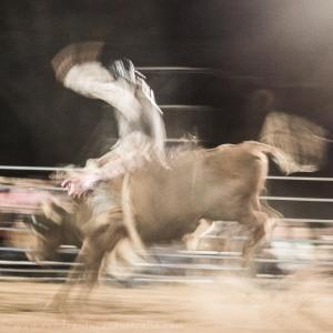 Bull riding Jandowae Qld-7593