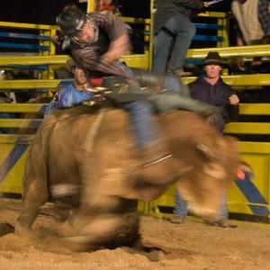 Bull riding Jandowae Qld-7608