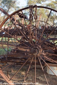 eyre-peninsular-south-australia-35