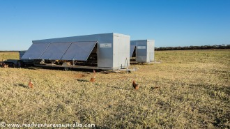 Solar powered hen house. Woods Googs on the Eyre Peninsular near Kimba